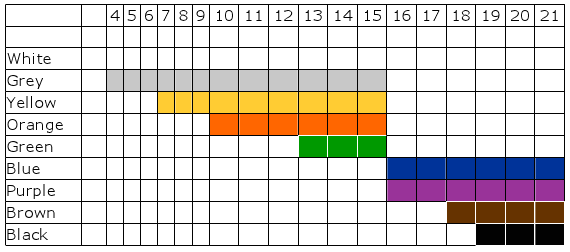 IBJJF Belt Standards By Age